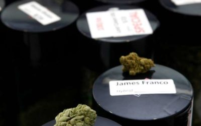 Trademark's a Drag for Pot Producers